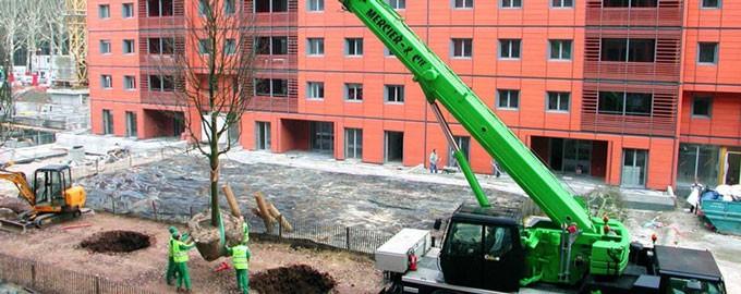 Levage de mobilier urbain et d'arbres