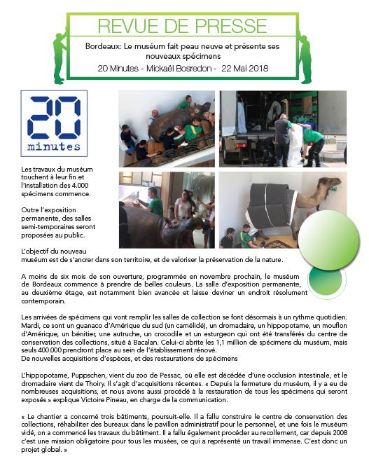 Transfert de collections par Cometra groupe BOVIS à Bordeaux